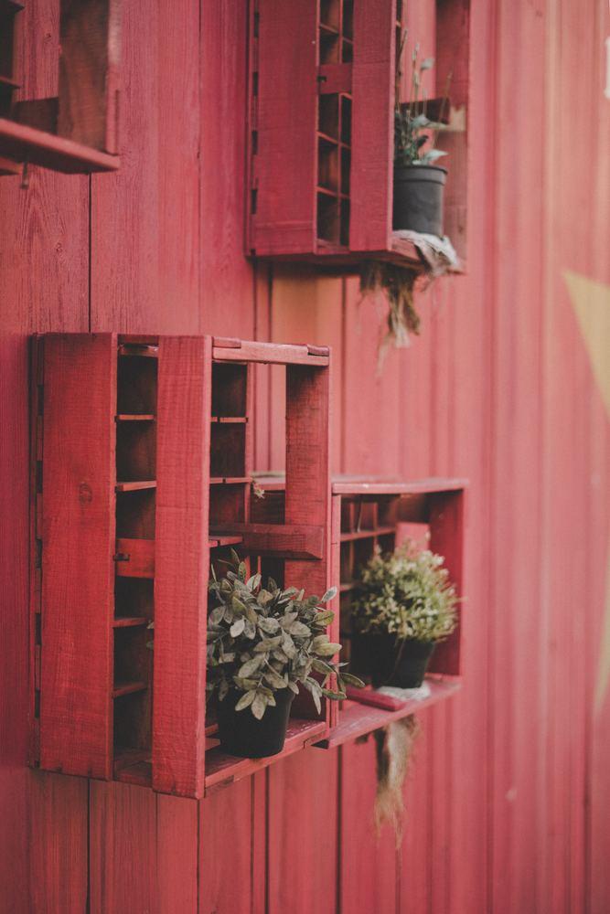 Mit den neuen Pflanzenhaltern Ihre Wände verschönern